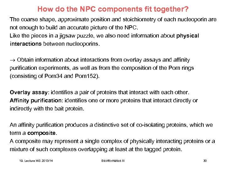 How do the NPC components fit together? The coarse shape, approximate position and stoichiometry