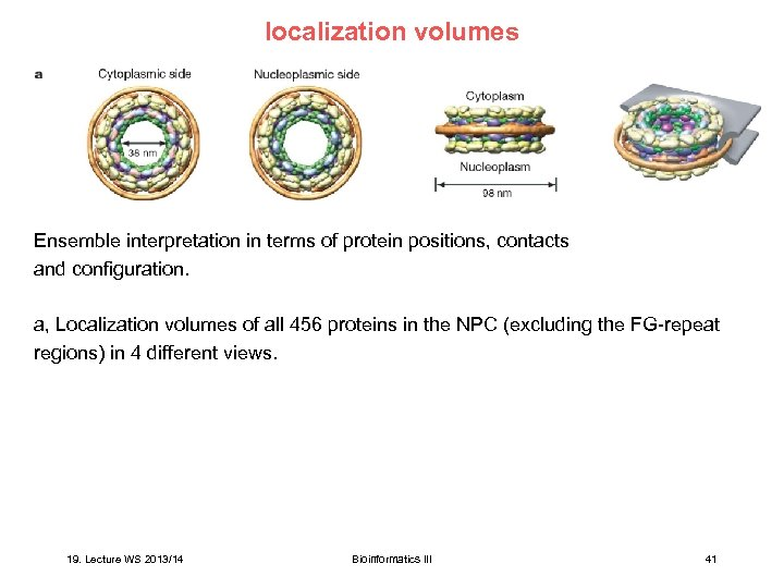 localization volumes Ensemble interpretation in terms of protein positions, contacts and configuration. a, Localization