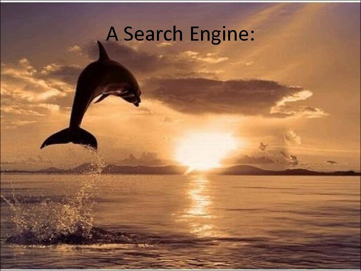 A Search Engine: