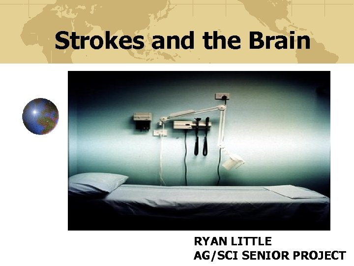 Strokes and the Brain RYAN LITTLE AG/SCI SENIOR PROJECT
