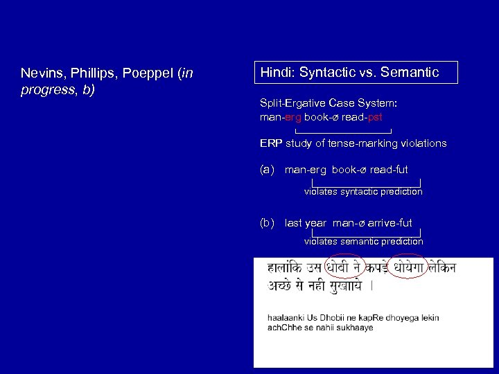 Nevins, Phillips, Poeppel (in progress, b) Hindi: Syntactic vs. Semantic Split-Ergative Case System: man-erg
