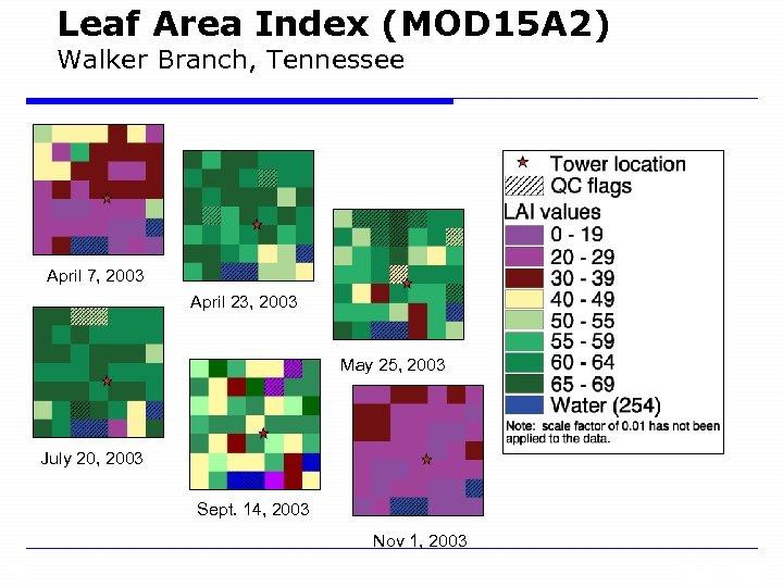 Leaf Area Index (MOD 15 A 2) Walker Branch, Tennessee April 7, 2003 April
