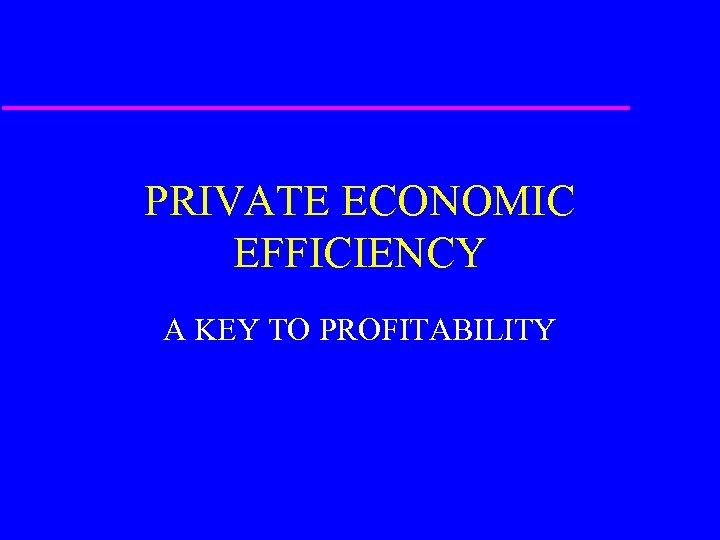 PRIVATE ECONOMIC EFFICIENCY A KEY TO PROFITABILITY