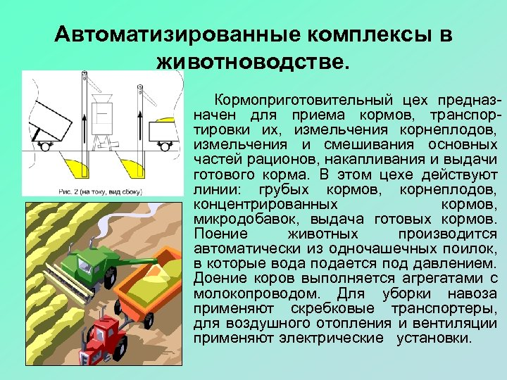 Автоматизированные комплексы в животноводстве. Кормоприготовительный цех предназначен для приема кормов, транспортировки их, измельчения корнеплодов,