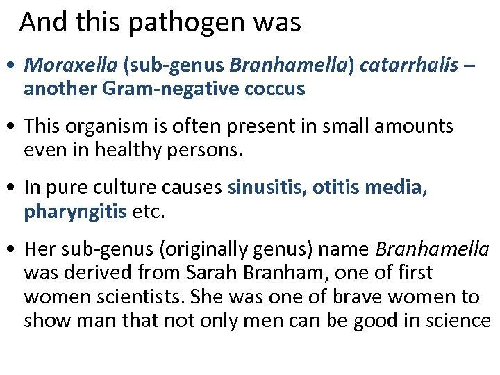 And this pathogen was • Moraxella (sub-genus Branhamella) catarrhalis – another Gram-negative coccus •