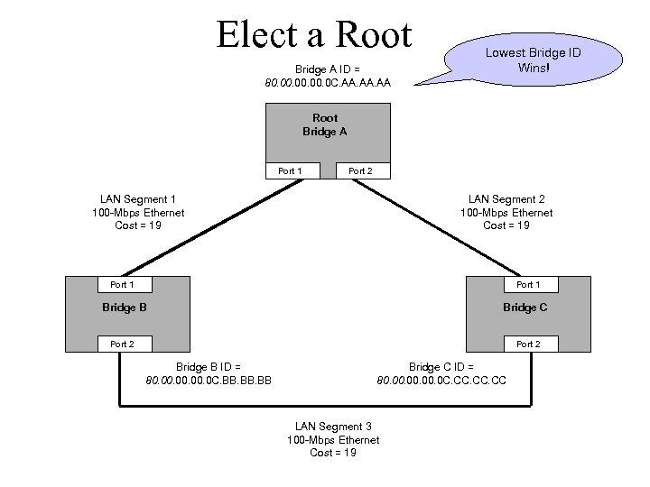 Elect a Root Bridge A ID = 80. 00. 0 C. AA. AA Lowest