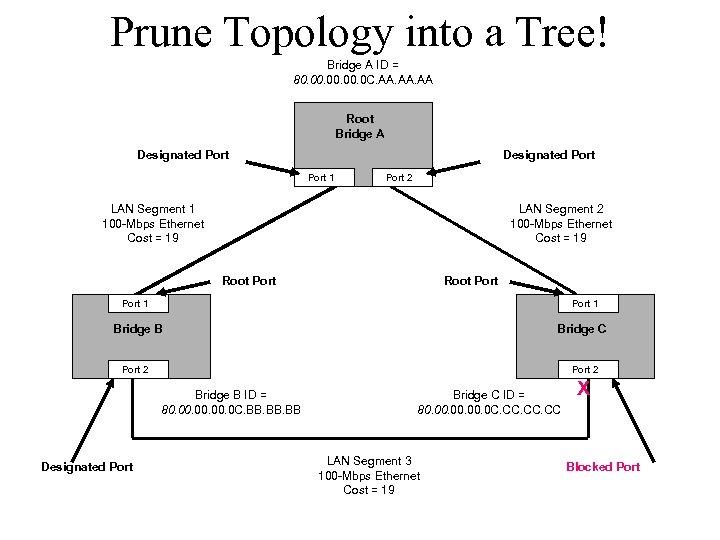 Prune Topology into a Tree! Bridge A ID = 80. 00. 0 C. AA.