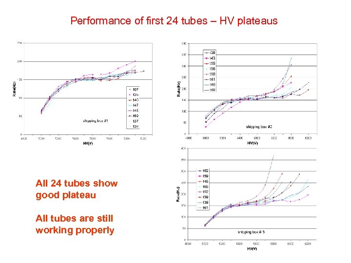 Performance of first 24 tubes – HV plateaus All 24 tubes show good plateau