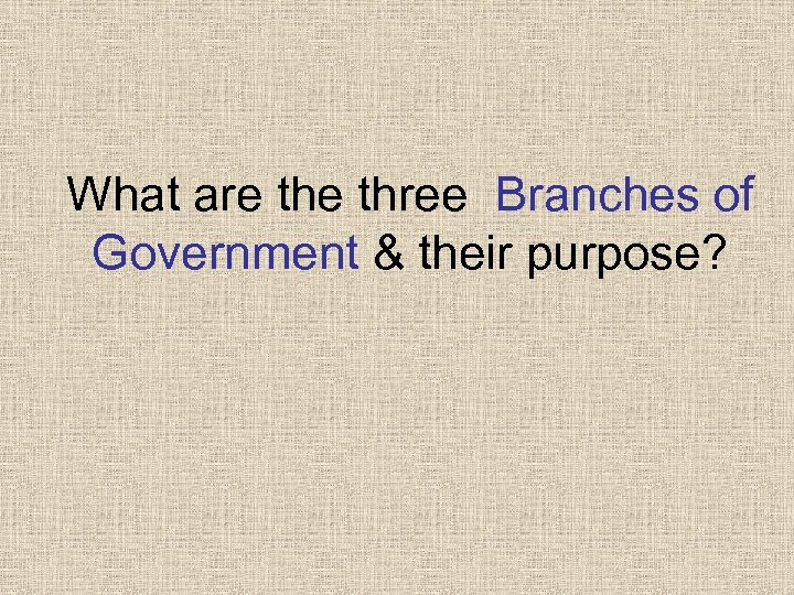 What are three Branches of Government & their purpose?
