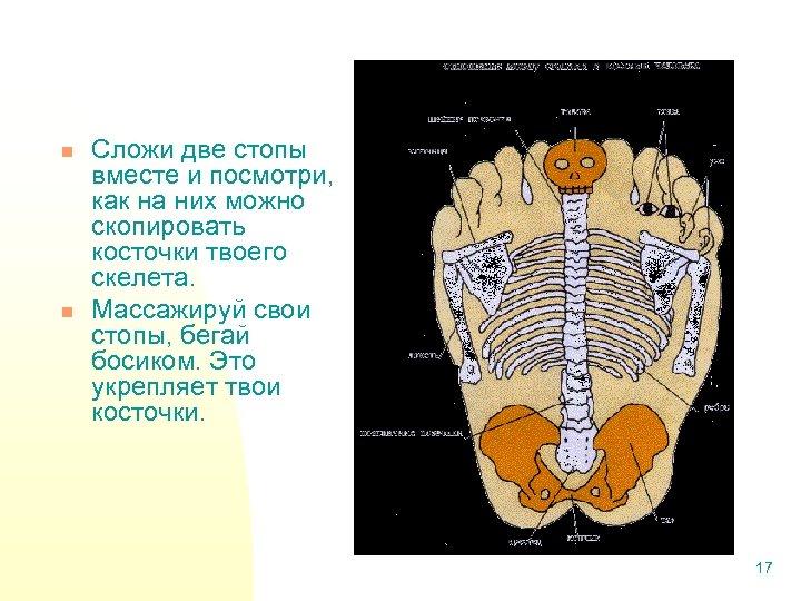 n n Сложи две стопы вместе и посмотри, как на них можно скопировать косточки