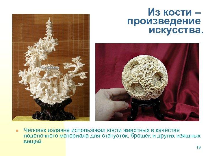 Из кости – произведение искусства. n Человек издавна использовал кости животных в качестве поделочного