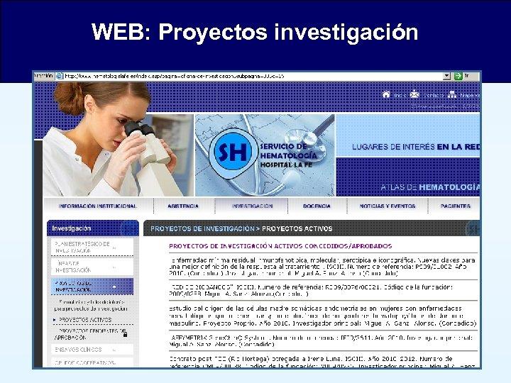 WEB: Proyectos investigación