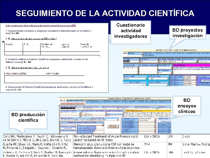 SEGUIMIENTO DE LA ACTIVIDAD CIENTÍFICA Cuestionario actividad investigadores BD producción científica BD proyectos investigación