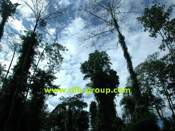 www. dlh-group. com 40