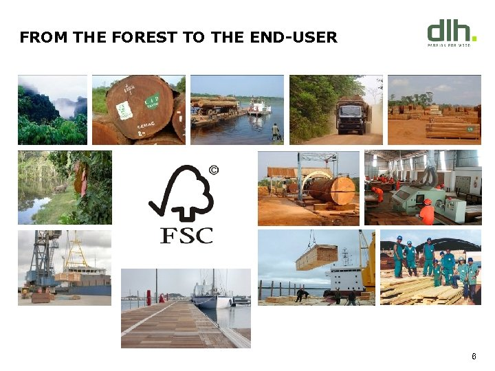 FROM THE FOREST TO THE END-USER X 6