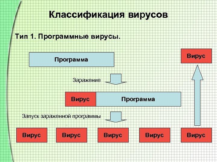 Классификация вирусов Тип 1. Программные вирусы. Вирус Программа Заражение Вирус Программа Запуск зараженной программы