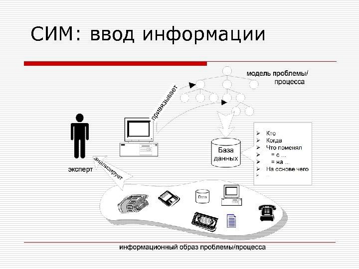 СИМ: ввод информации