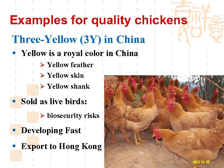 Examples for quality chickens Three-Yellow (3 Y) in China § Yellow is a royal