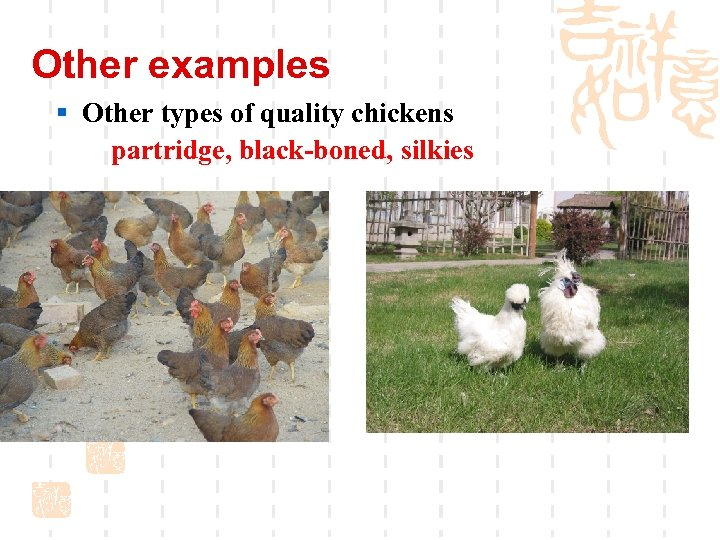 Other examples § Other types of quality chickens partridge, black-boned, silkies