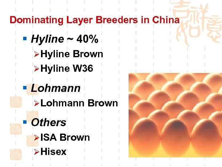 Dominating Layer Breeders in China § Hyline ~ 40% ØHyline Brown ØHyline W 36