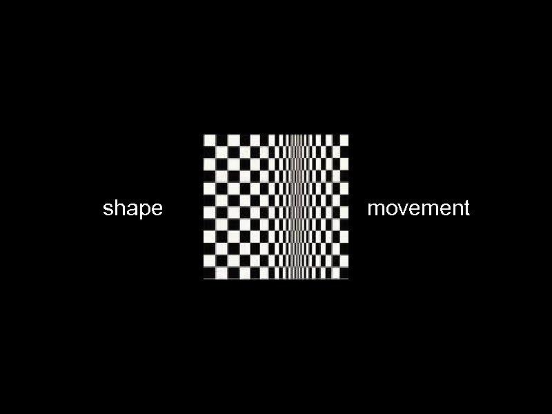 shape movement
