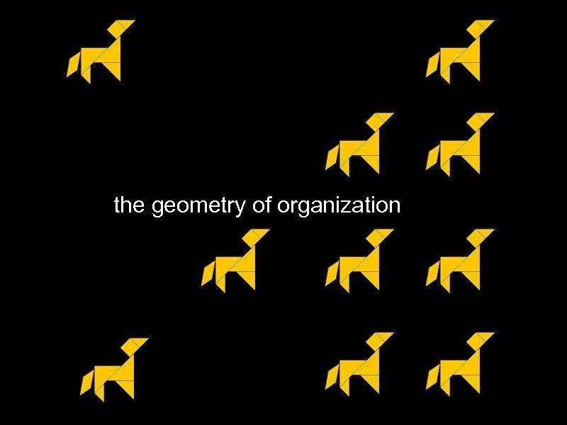 the geometry of organization