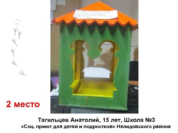 2 место Тагильцев Анатолий, 15 лет, Школа № 3 «Соц. приют для детей и