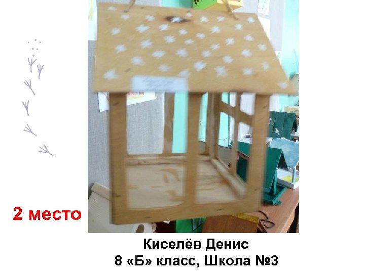 2 место Киселёв Денис 8 «Б» класс, Школа № 3