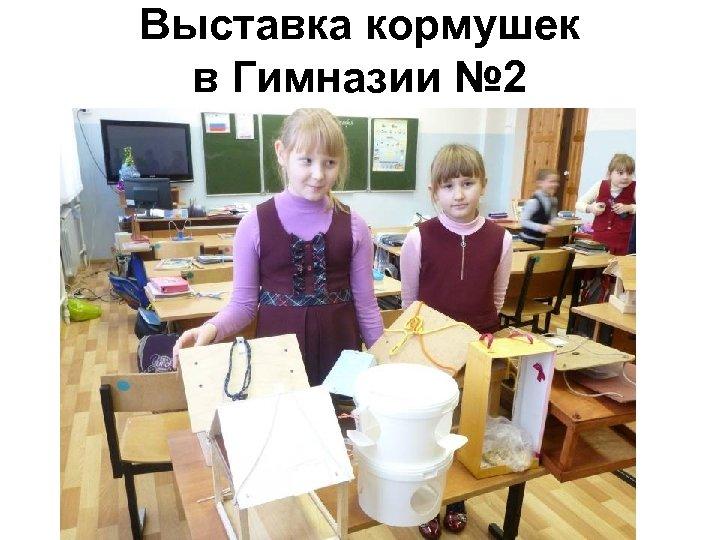 Выставка кормушек в Гимназии № 2