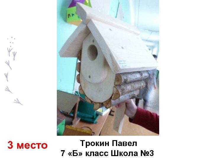3 место Трокин Павел 7 «Б» класс Школа № 3