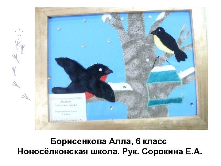 Борисенкова Алла, 6 класс Новосёлковская школа. Рук. Сорокина Е. А.