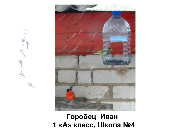 Горобец Иван 1 «А» класс, Школа № 4