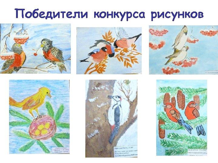 Победители конкурса рисунков