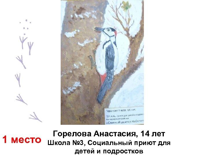 1 место Горелова Анастасия, 14 лет Школа № 3, Социальный приют для детей и