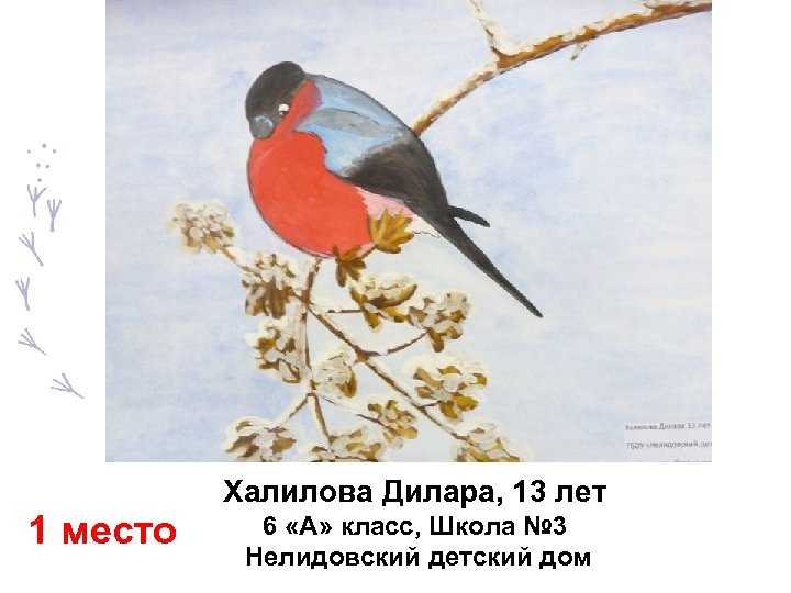 1 место Халилова Дилара, 13 лет 6 «А» класс, Школа № 3 Нелидовский детский