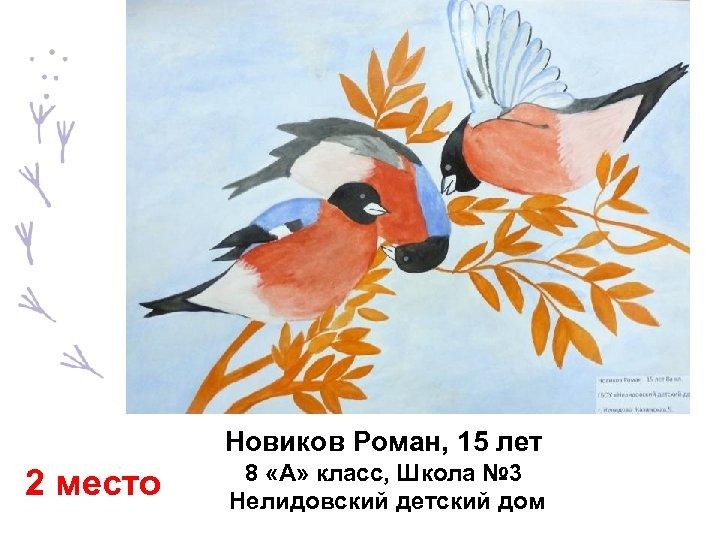 Новиков Роман, 15 лет 2 место 8 «А» класс, Школа № 3 Нелидовский детский