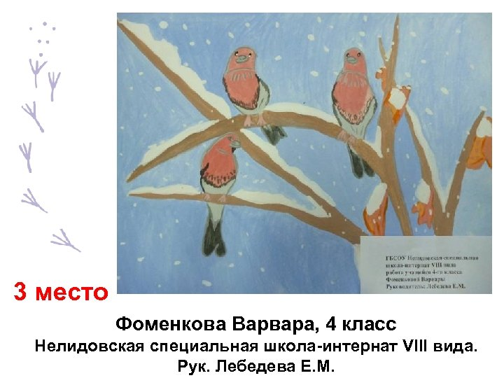 3 место Фоменкова Варвара, 4 класс Нелидовская специальная школа-интернат VIII вида. Рук. Лебедева Е.