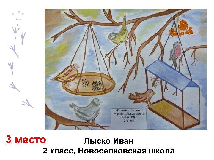 3 место Лыско Иван 2 класс, Новосёлковская школа
