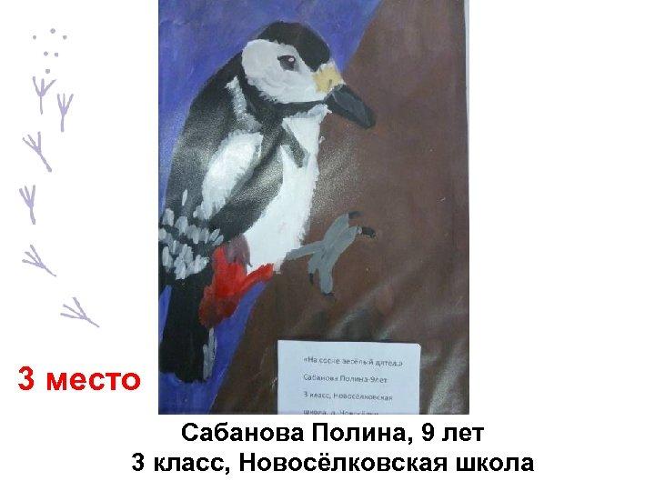 3 место Сабанова Полина, 9 лет 3 класс, Новосёлковская школа