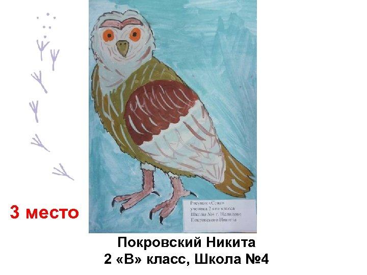 3 место Покровский Никита 2 «В» класс, Школа № 4