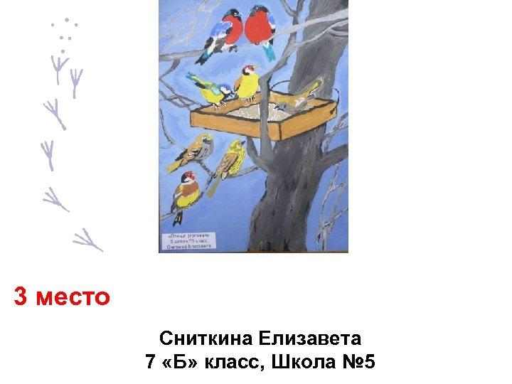 3 место Сниткина Елизавета 7 «Б» класс, Школа № 5