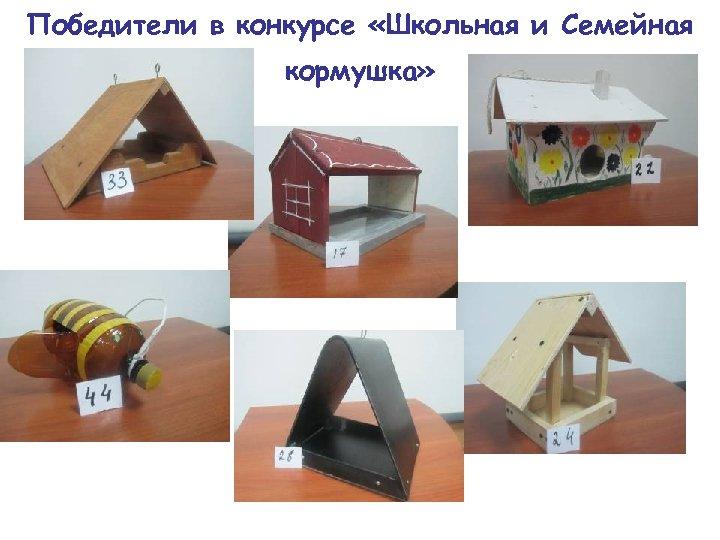 Победители в конкурсе «Школьная и Семейная кормушка»