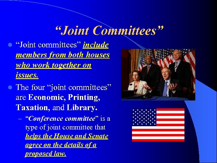 """Joint Committees"" ""Joint committees"" include members from both houses who work together on issues."