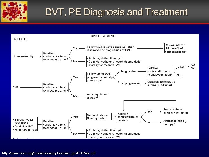 DVT, PE Diagnosis and Treatment http: //www. nccn. org/professionals/physician_gls/PDF/vte. pdf