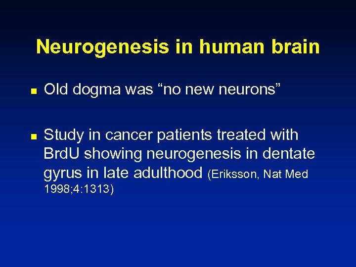 "Neurogenesis in human brain n n Old dogma was ""no new neurons"" Study in"