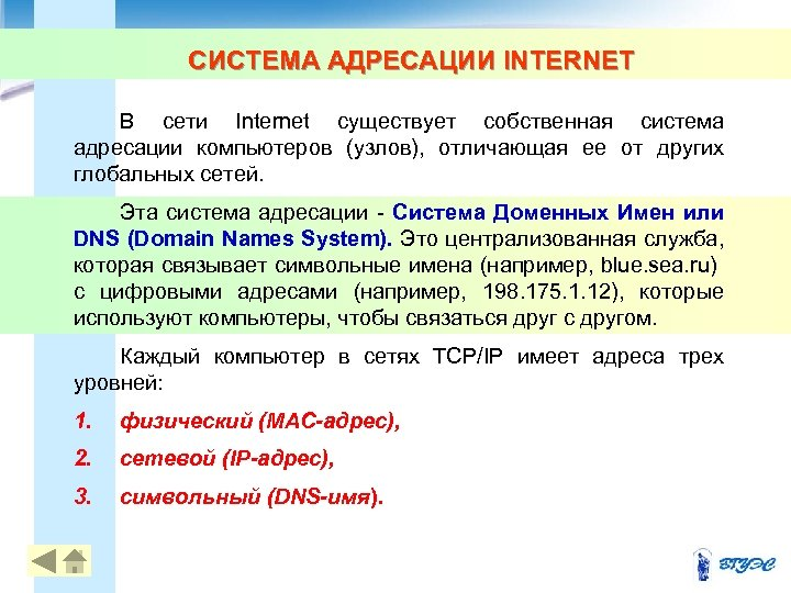 СИСТЕМА АДРЕСАЦИИ INTERNET В сети Internet существует собственная система адресации компьютеров (узлов), отличающая ее