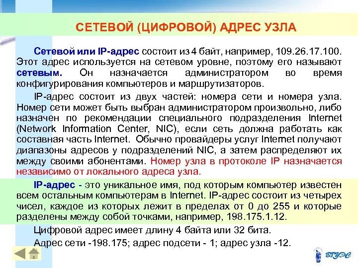 СЕТЕВОЙ (ЦИФРОВОЙ) АДРЕС УЗЛА Сетевой или IP-адрес состоит из 4 байт, например, 109. 26.