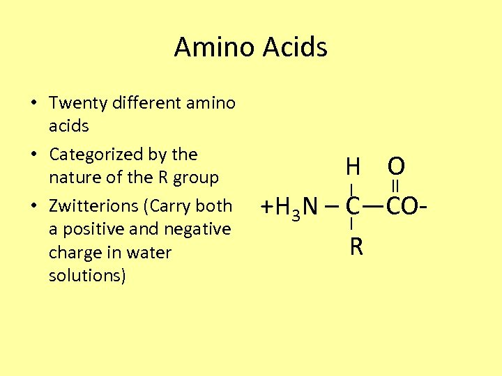 Amino Acids • Twenty different amino acids • Categorized by the nature of the