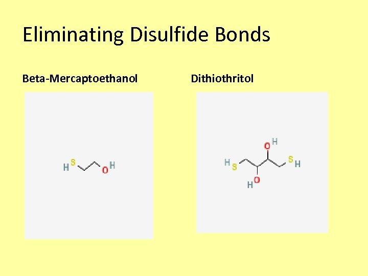 Eliminating Disulfide Bonds Beta-Mercaptoethanol Dithiothritol