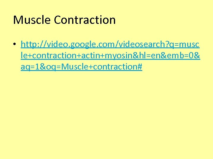 Muscle Contraction • http: //video. google. com/videosearch? q=musc le+contraction+actin+myosin&hl=en&emb=0& aq=1&oq=Muscle+contraction#